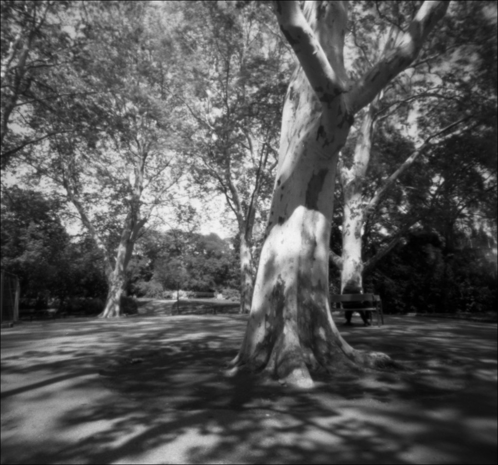 2014-04_Ilford_pinhole_day2